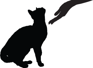 Community Cats TNR